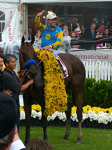 American Pharoah and Victor Espinoza at the Preakness Stakes
